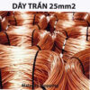 Day cap dong tran 25mm2 Malanaz shopping