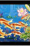 ranh quần ngư - TSMHN02 - A