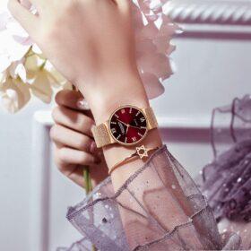 Đồng hồ nữ hàng thời trang cao cấp - Chống nước độ sâu 30ATM bảo hành 12 tháng - DHN26